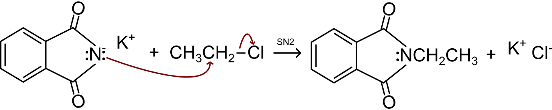SN2 tra la Flatimmide ed il cloroetano