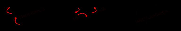 3 Strutture di Risonanza dell'Estere Acetacetico Deprotonato
