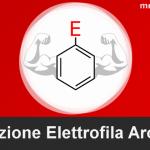 Grafica sostituzione Elettrofila Aromatica